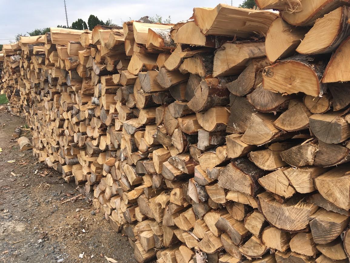 výprodej palivového dřeva bříza 100 cm